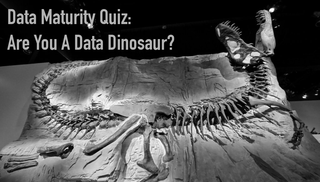 Data Maturity Quiz: Are You a Data Dinosaur?