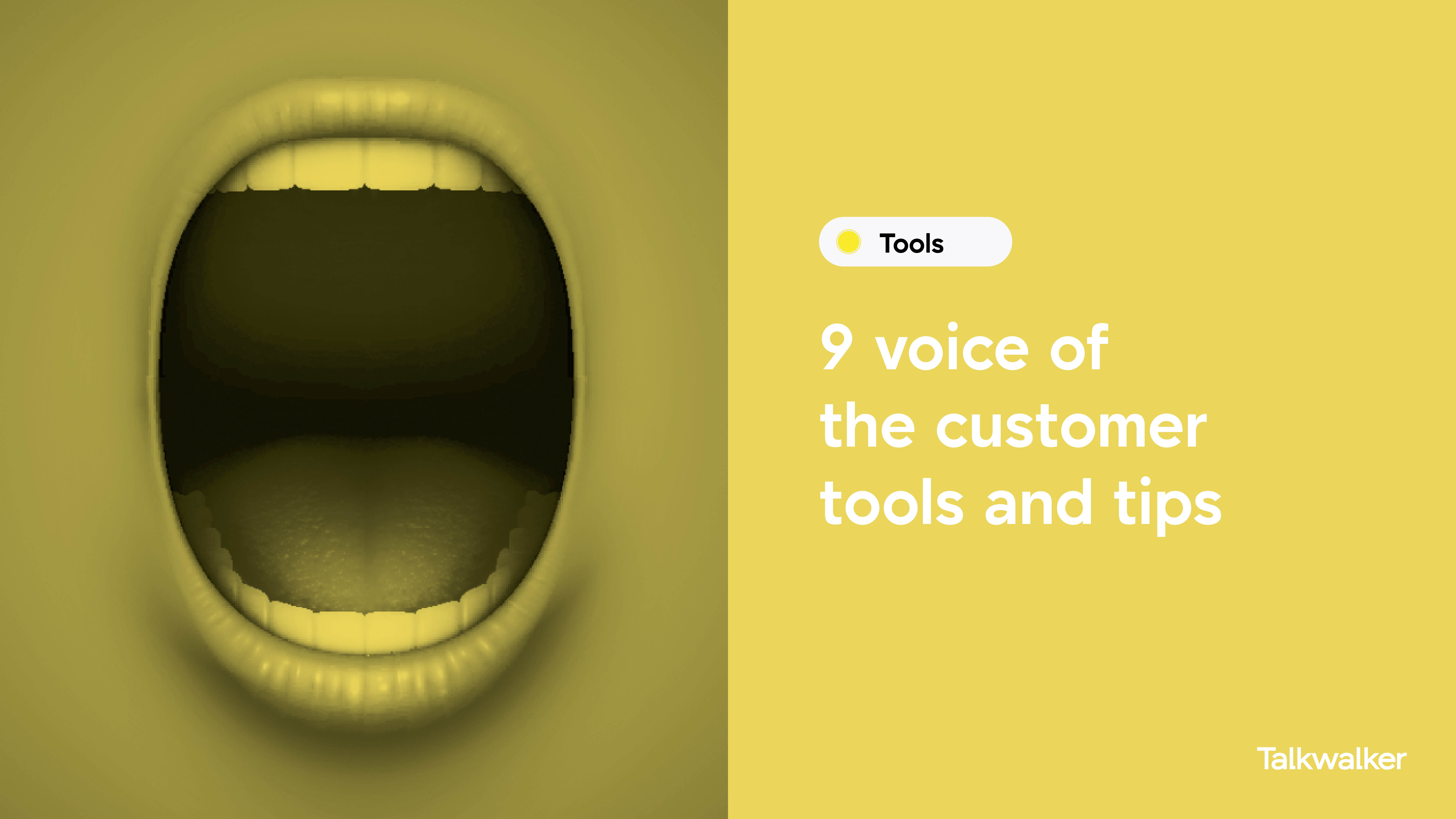 Voice of customer tools - mouth open wide