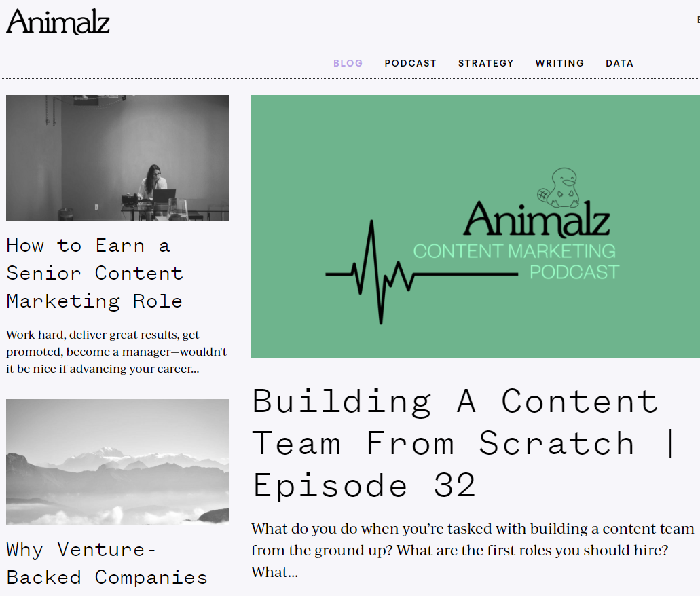 best digital marketing blog: Animalz